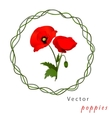 white background with poppies vector image vector image