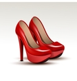Woman Fashion Shoes on High Heels vector image vector image