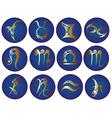 Zodiac icons vector image
