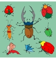 Set of colorful bugs vector image