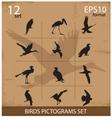 Set of silhouettes birds symbols vector image