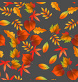 seamless with red and yellow autumn leaves vector image vector image