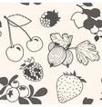 Unpainted berries pattern vector image