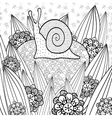 Cute snail adult coloring book page vector image vector image