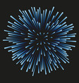 fireworks blue on a black background vector image
