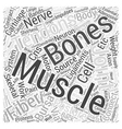 How the Skeletal Muscles cause Back Pain Word vector image vector image