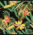 tropical foliage flowers seamless black background vector image vector image