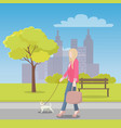 woman walks with little dog in park near city vector image vector image