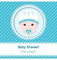 Baby boy shower vector image