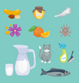 allergy symbols disease healthcare food viruses vector image