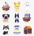 cute cats in boxes and dogs food house domestic vector image