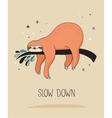 Cute hand drawn sloths funny design vector image vector image