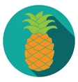 Flat Pineapple Icon colorful vector image vector image