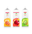 juice package set carton juice box vector image vector image