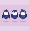penguins cartoon antarctic bird animal wildlife vector image