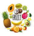 realistic fresh exotic fruits round concept vector image