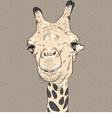 sketch closeup portrait of funny giraffe vector image vector image