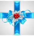 blue bow with christmas decorations isolated vector image