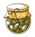 green olives jar hand drawn vector image vector image
