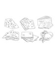 hand drawn different type cheese set organic vector image vector image