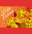 hello autumn hand drawn nature foliage different vector image