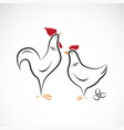 male and female chickens design chickens vector image vector image