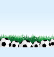 soccer balls and green grass vector image