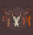 a deer skull with feathers sketch tattoo sti vector image