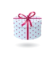 Blue with pink spots gift box vector image vector image