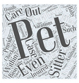 Choosing a Pet Sitter Word Cloud Concept vector image vector image