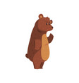 friendly smiling bear waving his paw funny vector image vector image