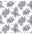 seamless pattern with hand drawn berries in vector image vector image