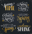 Spring time wording vector image vector image