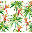 tropical plants seamless white background vector image
