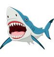 cartoon shark with opened mouth vector image vector image