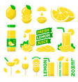 lemon fuit and fresh juice flat elements vector image vector image