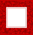 red carnation flower banner card vector image