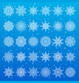 set different snowflakes on vector image