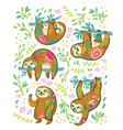 sloth bear animal characters in floral ornament in vector image vector image