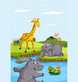 wild animals living next to the river vector image vector image