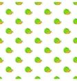Cabbage and carrots pattern cartoon style vector image