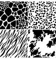 animal skin seamless patterns vector image