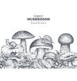 background with hand drawn forest mushrooms vector image vector image