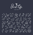 flat birds icon set in thin line style vector image vector image