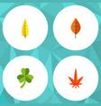 flat icon foliage set of leaf foliage aspen and vector image vector image