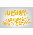 honey hand drawn signs and numbers vector image vector image