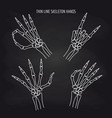 thin line skeleton hand gestures vector image