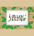 creative spring season background decorative vector image vector image