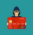 credit card data phishing hacker attack vector image