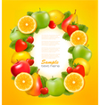 fresh fruit in frame vector image